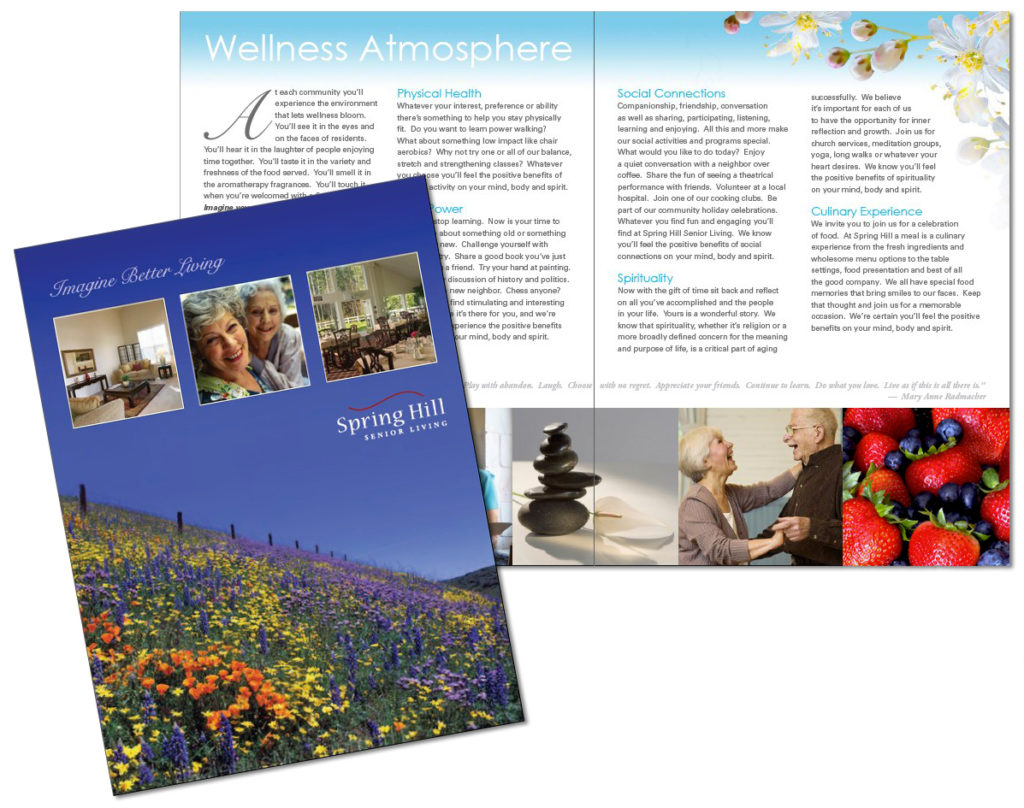 Large Brochure Design